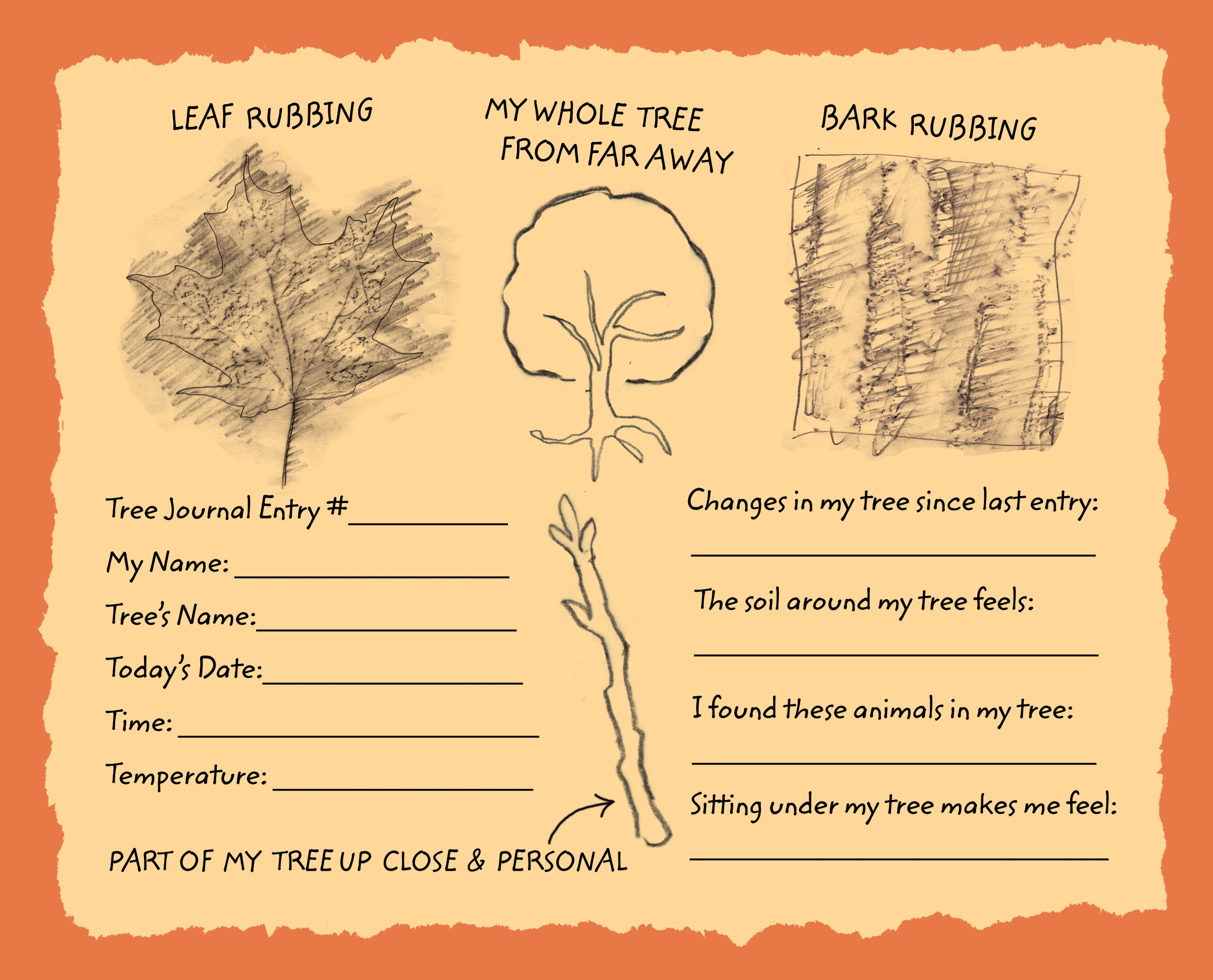 A journal page with rubbings of a leaf and bark
